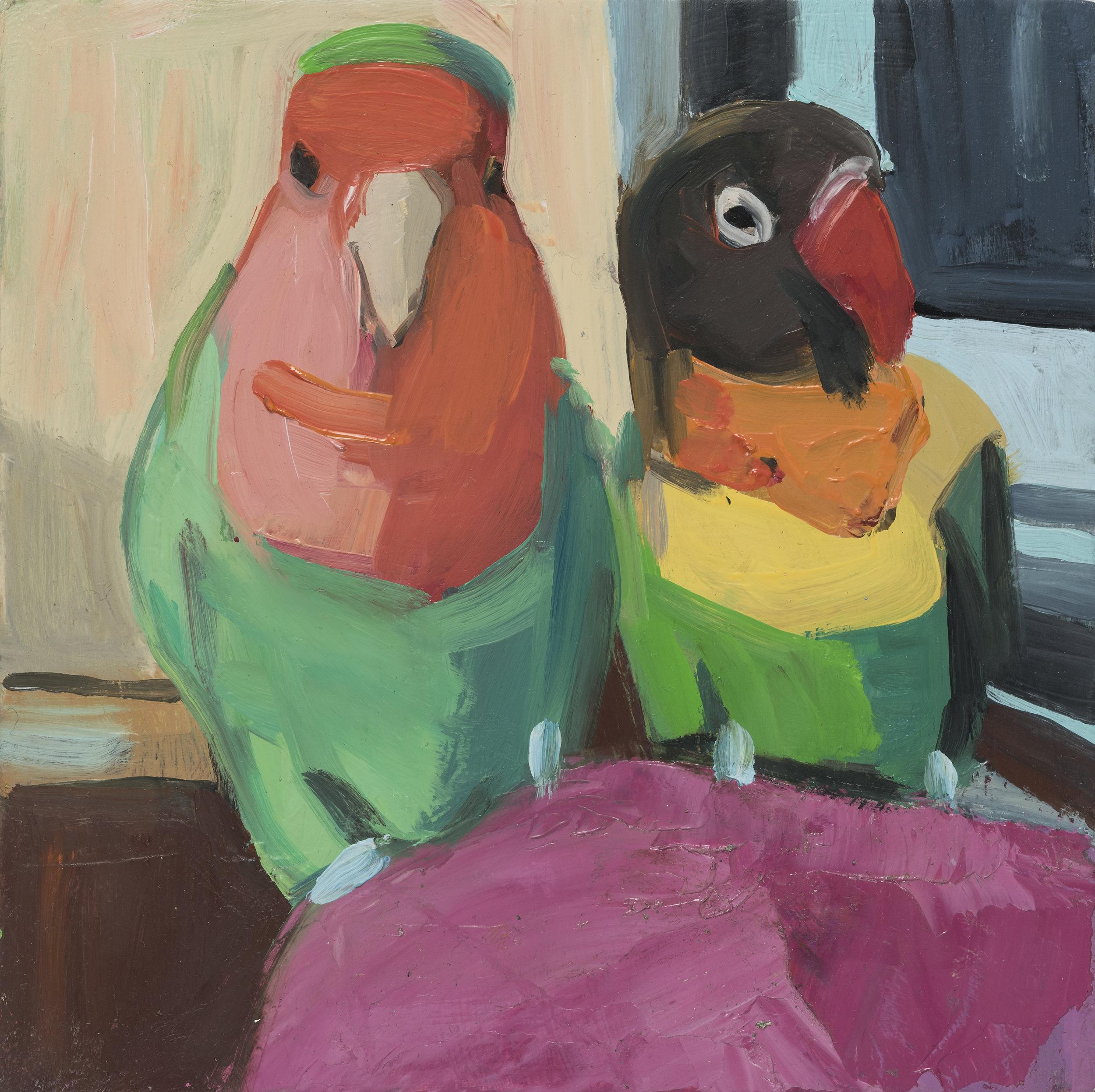 """Lovebird Gothi c 6"""" x 6"""""""