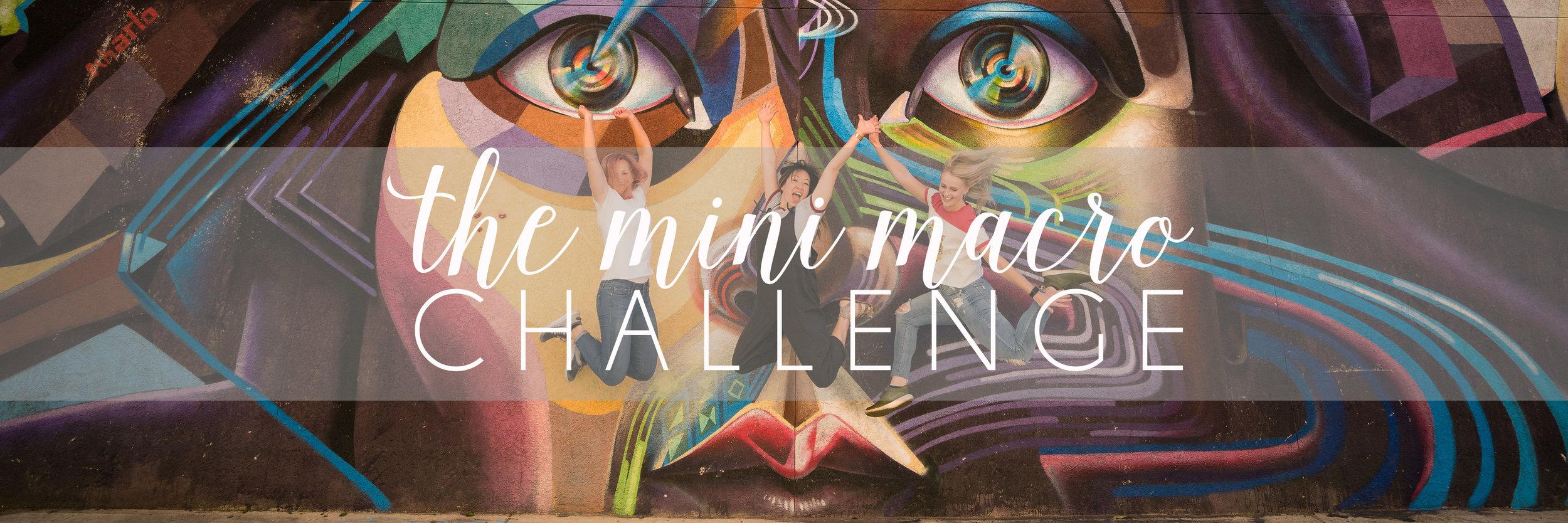 The Mini Macro Challenge Cover.jpg