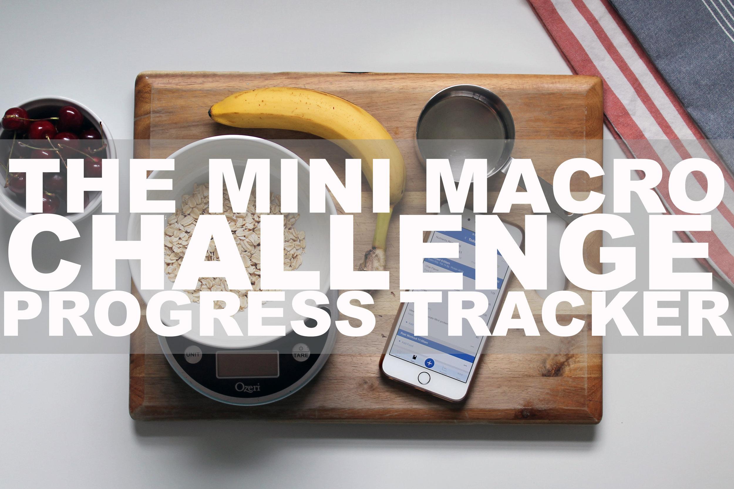 The Macro Challenge Progress Tracker Button.jpg