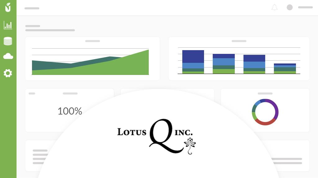 Lotus Q Banner.001.jpeg