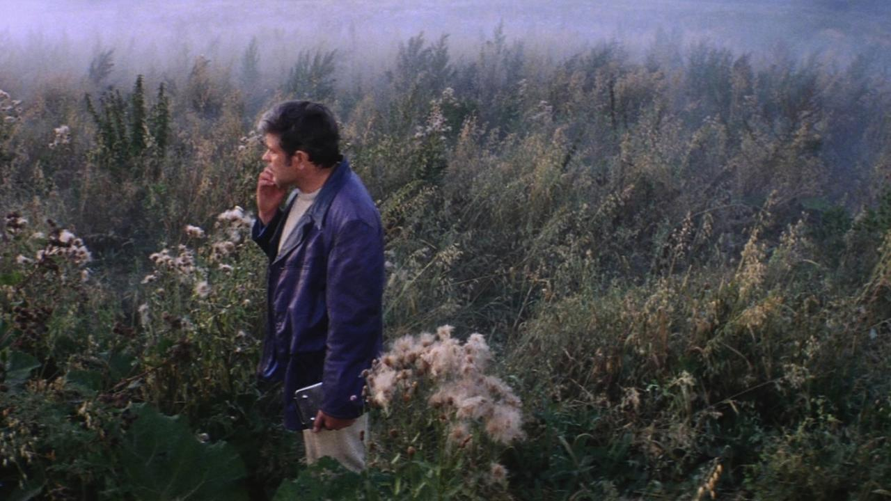 Andrei Tarkovsky,  Solaris  (still), 1972.