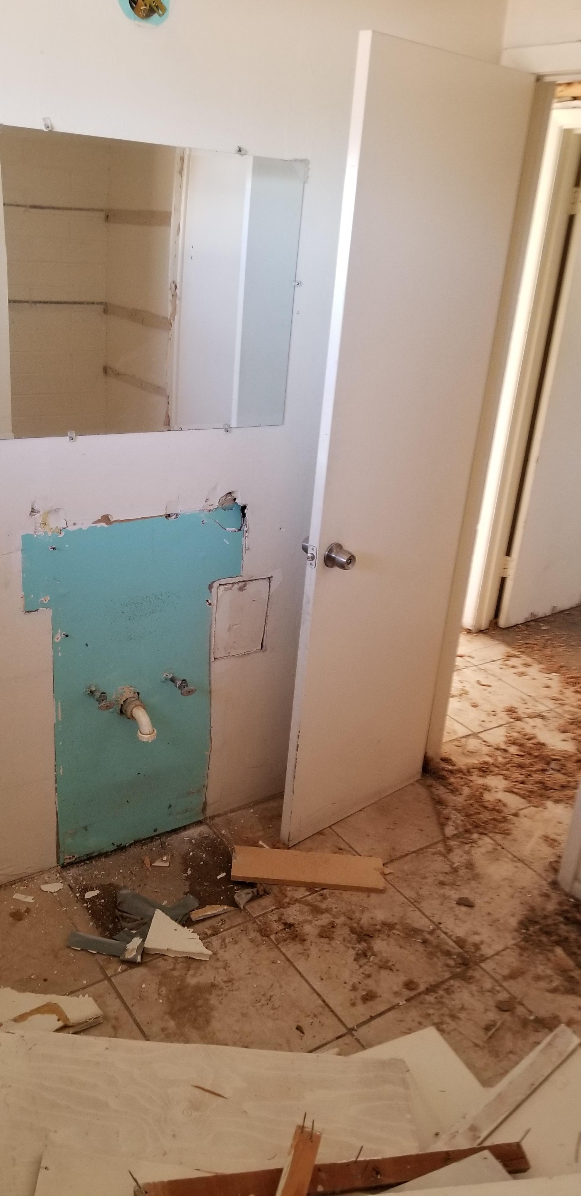 Vanity/toilet demo