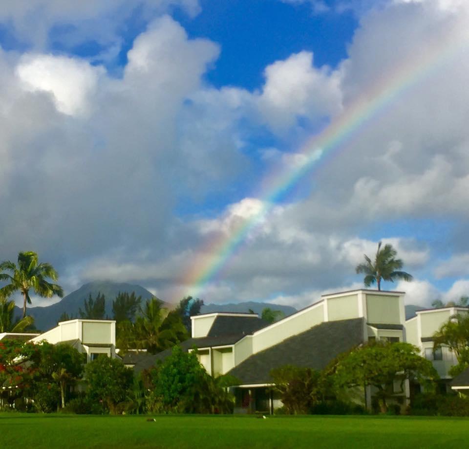 Nancy Williams -  Kaui,Hawaii  nancy@residekauai.com Hawaii Realtor!