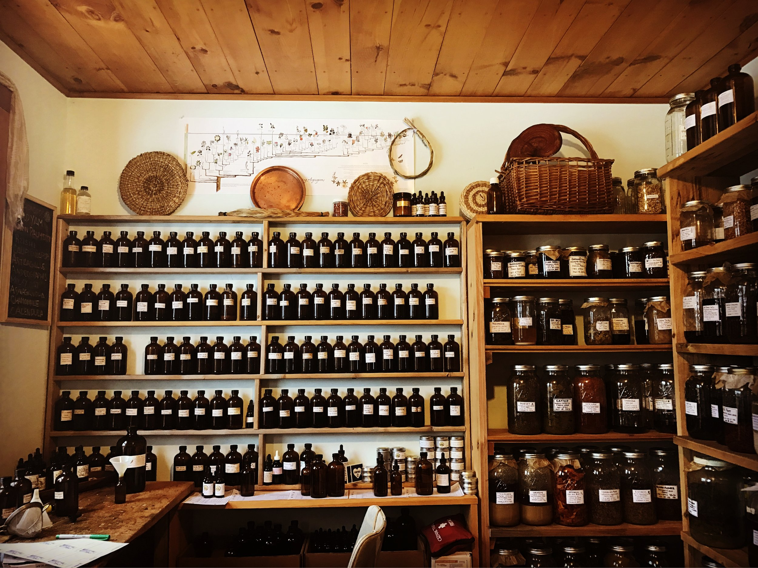 Your apothecary is a place to truly welcome the plants into your home. Together we'll fill it with glass bottles, jars, handcrafted labels, rows of herbs hanging to dry; everything you need to create a beautiful and functional home apothecary.