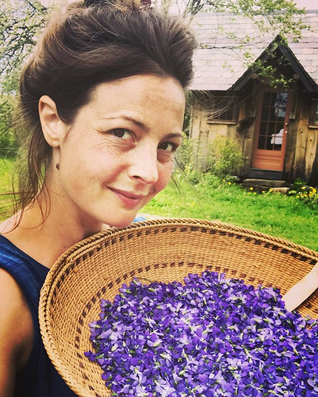 It's been a cold, slow, and very wet spring here in the mountains of Vermont and so it feels like absolute heaven to finally start harvesting flowers! These violets are joining apple blossoms and raspberry leaf for a spring tea blend for our herbal CSA. Back in my happy place :)