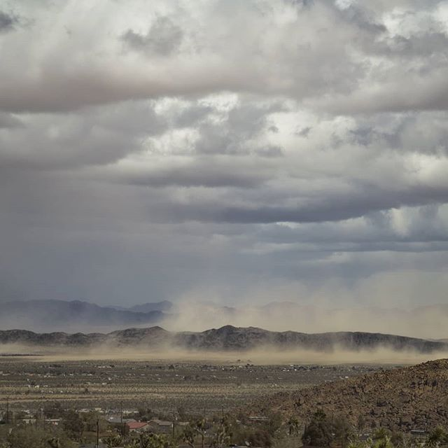Strong winds lifting and carrying dust and sand during a stormy day in the desert. . . . #joshuatree #yuccavalley #mojave #desert #mojavedesert #sand #storm #sandstorm #california #joshuatreenationalpark