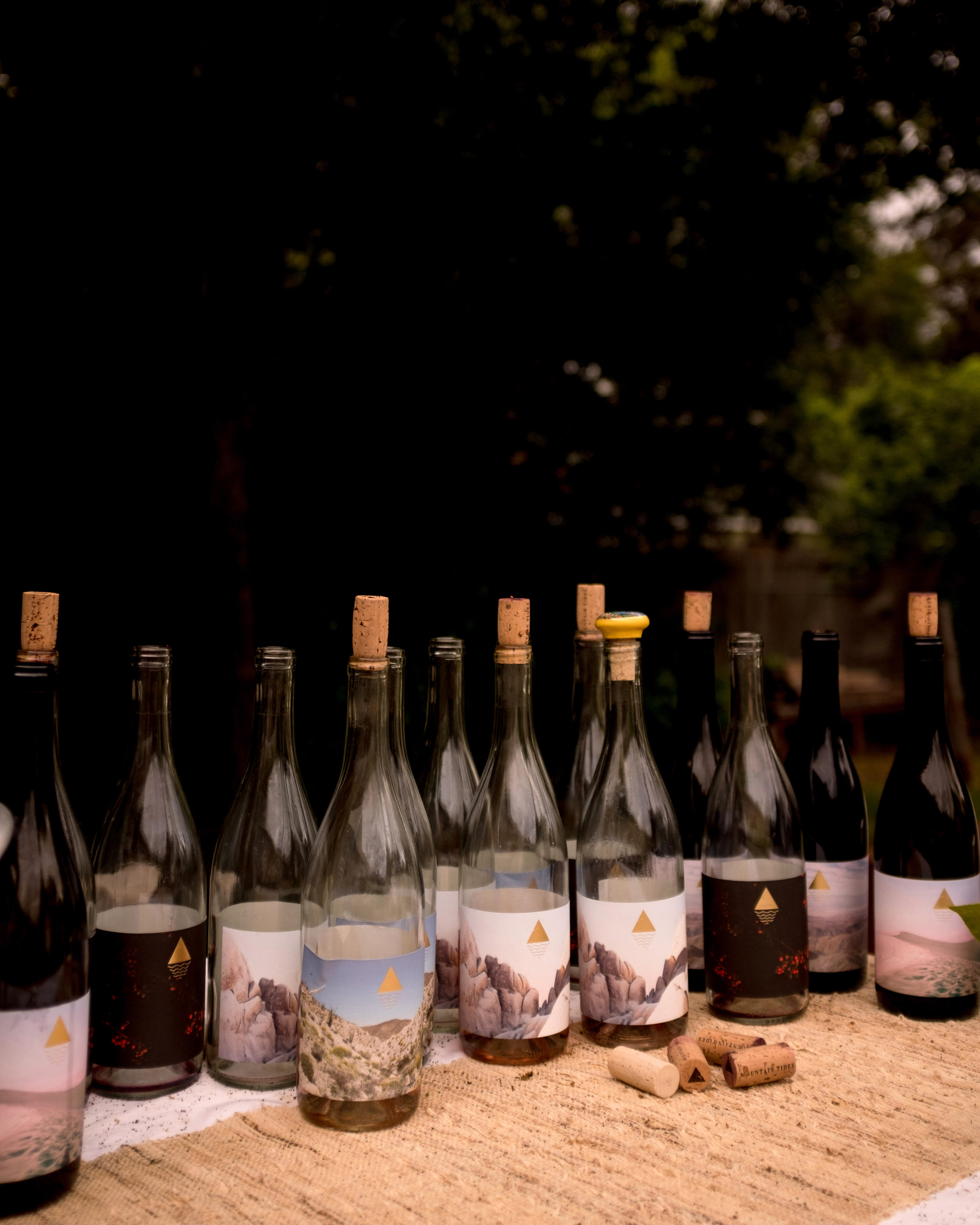 mountain-tides-wine-party-2.jpg