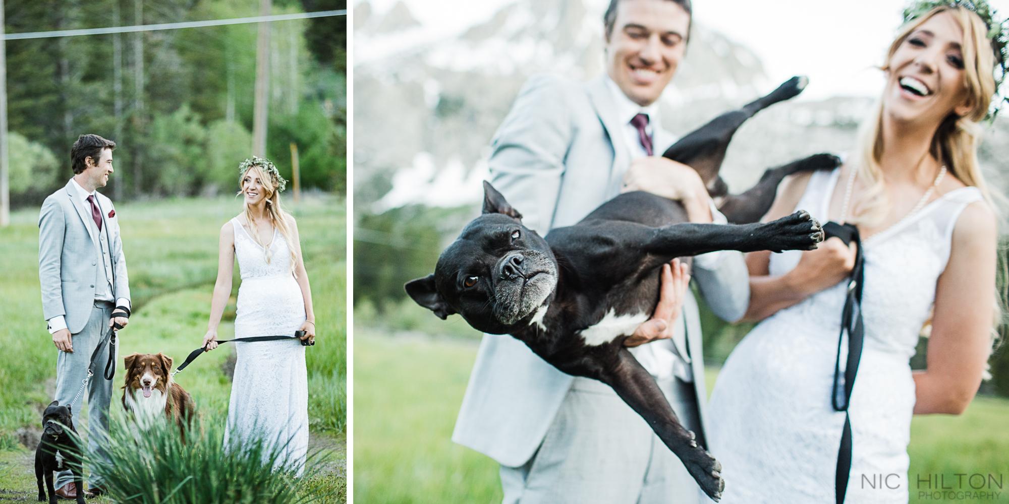 Bride-and-groom-photos-with-dog-double-eagle.jpg