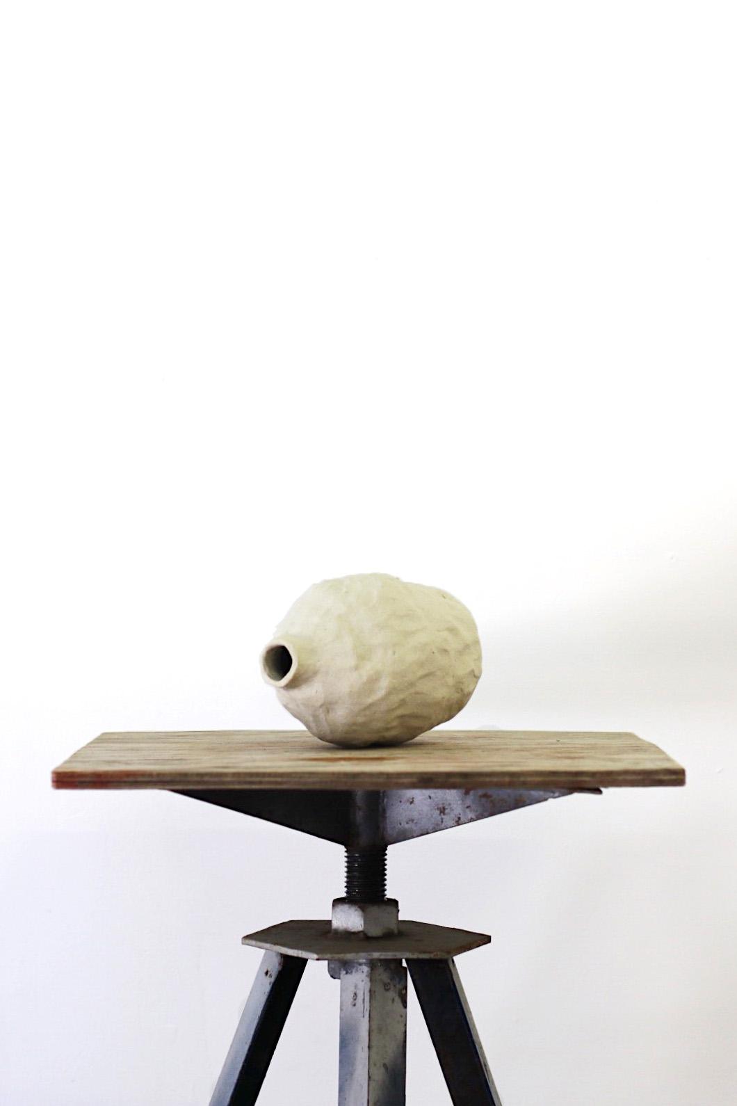 Peta Berghofer, Newly Formed, Vase #6, 2017.jpg