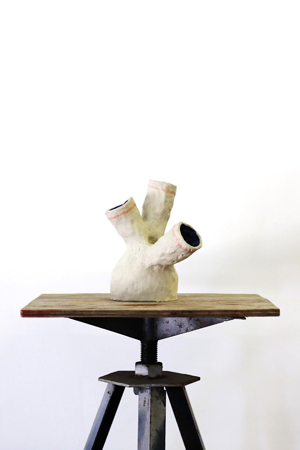 Peta Berghofer, Newly Formed, Ventricle Vase, 2017.jpg