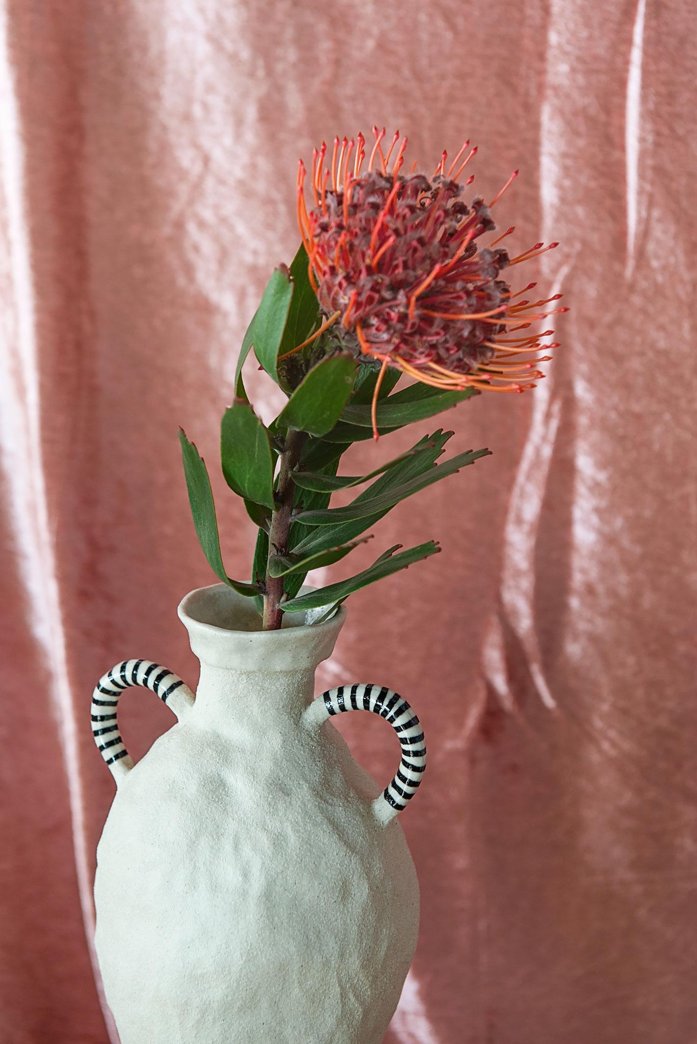 Peta Berghofer. Housebound, Amphora (&flower).jpg