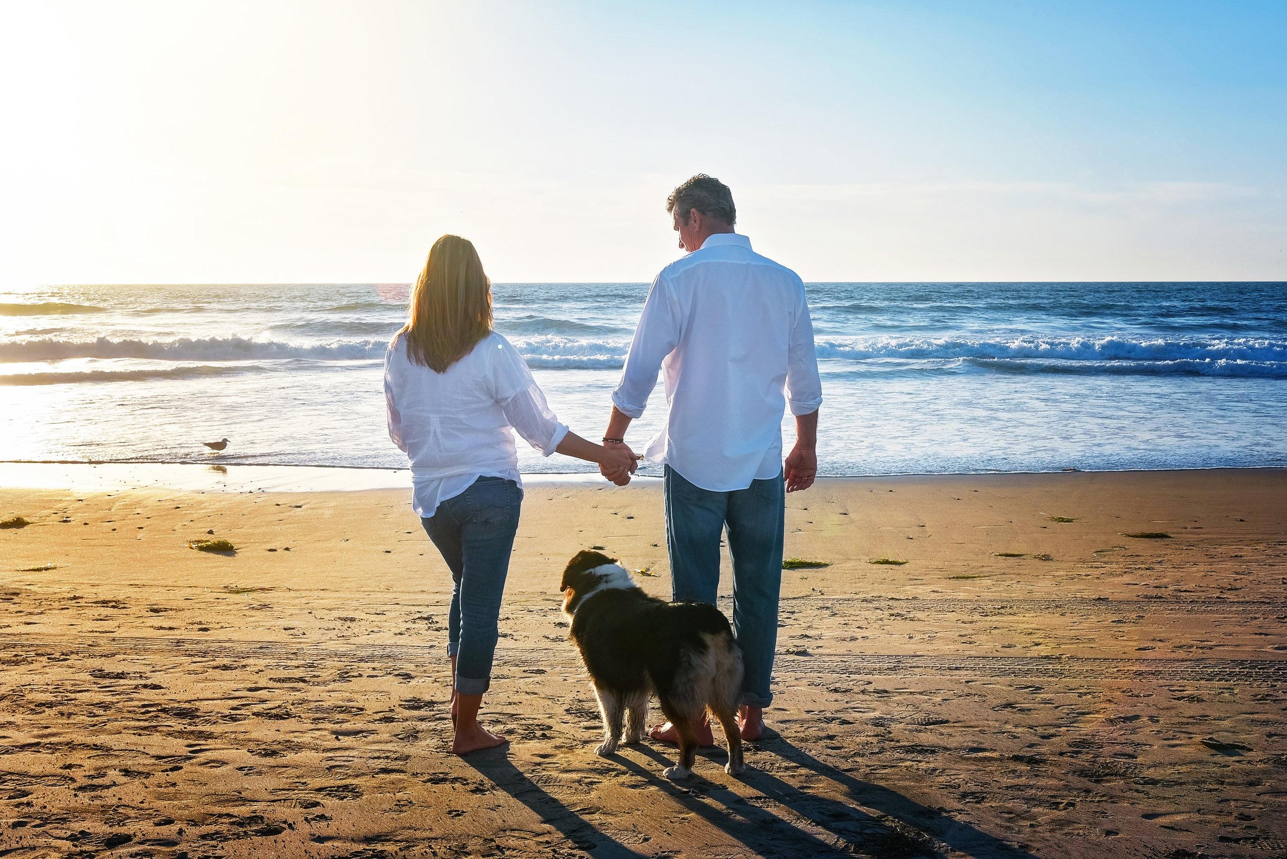 Couple with Dog | Washington DC Photographer | Wedding Lifestyle & Fashion Photographer