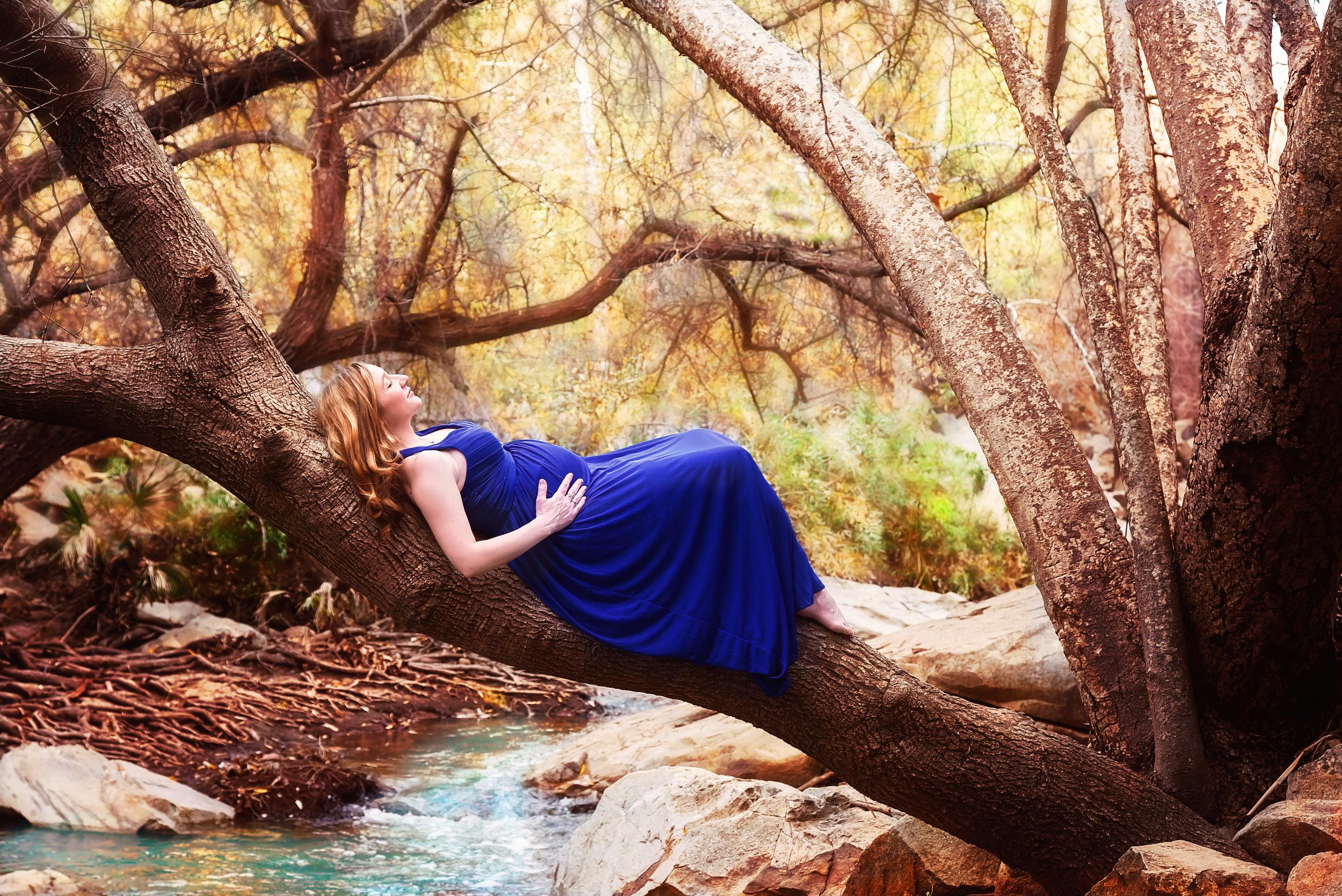 Maternity Tree Blue Dress | Lifestyle Portrait Photography | Lacey O