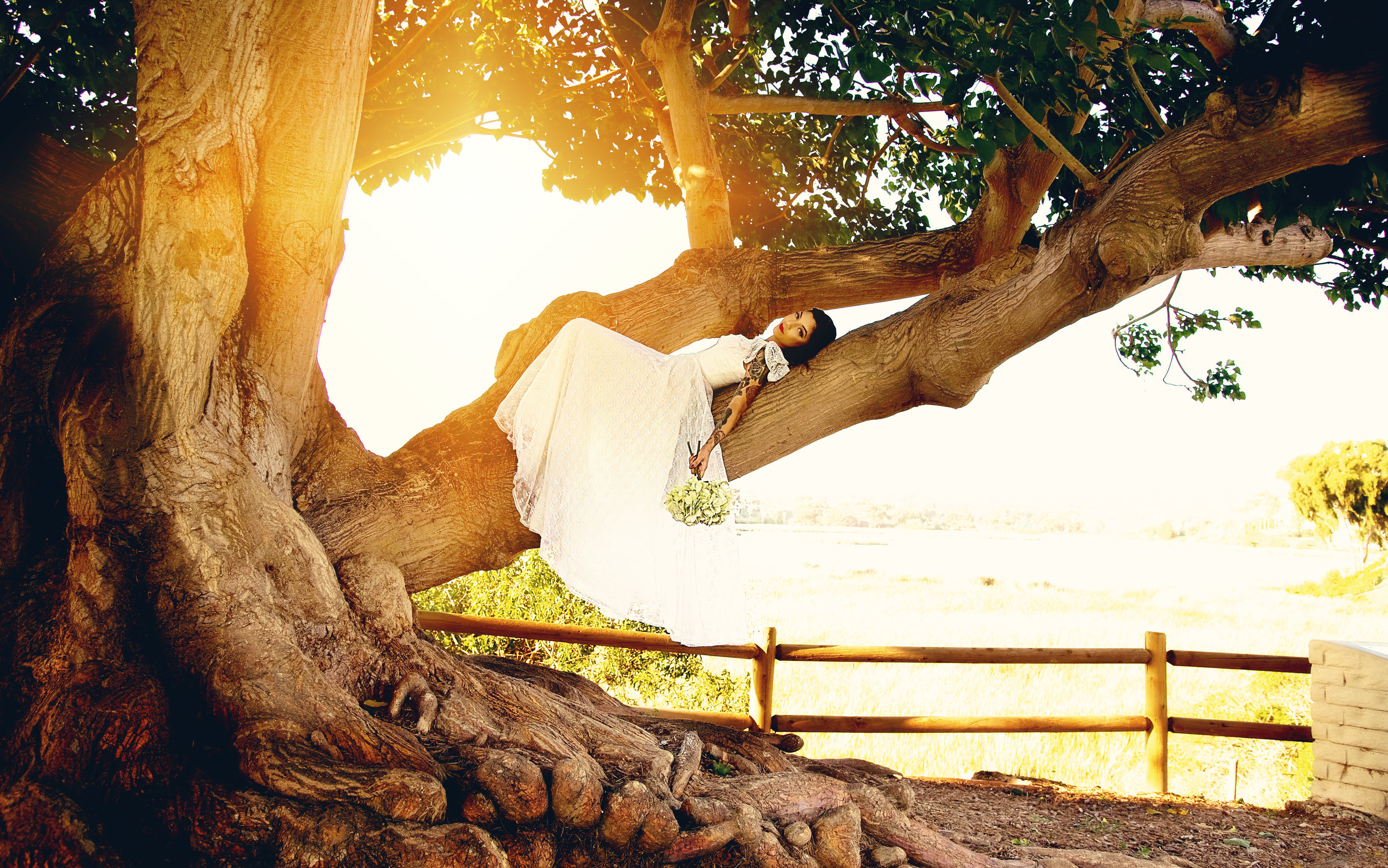 Portrait Tree Lifestyle Bride | Lifestyle Portrait Photography | Lacey O