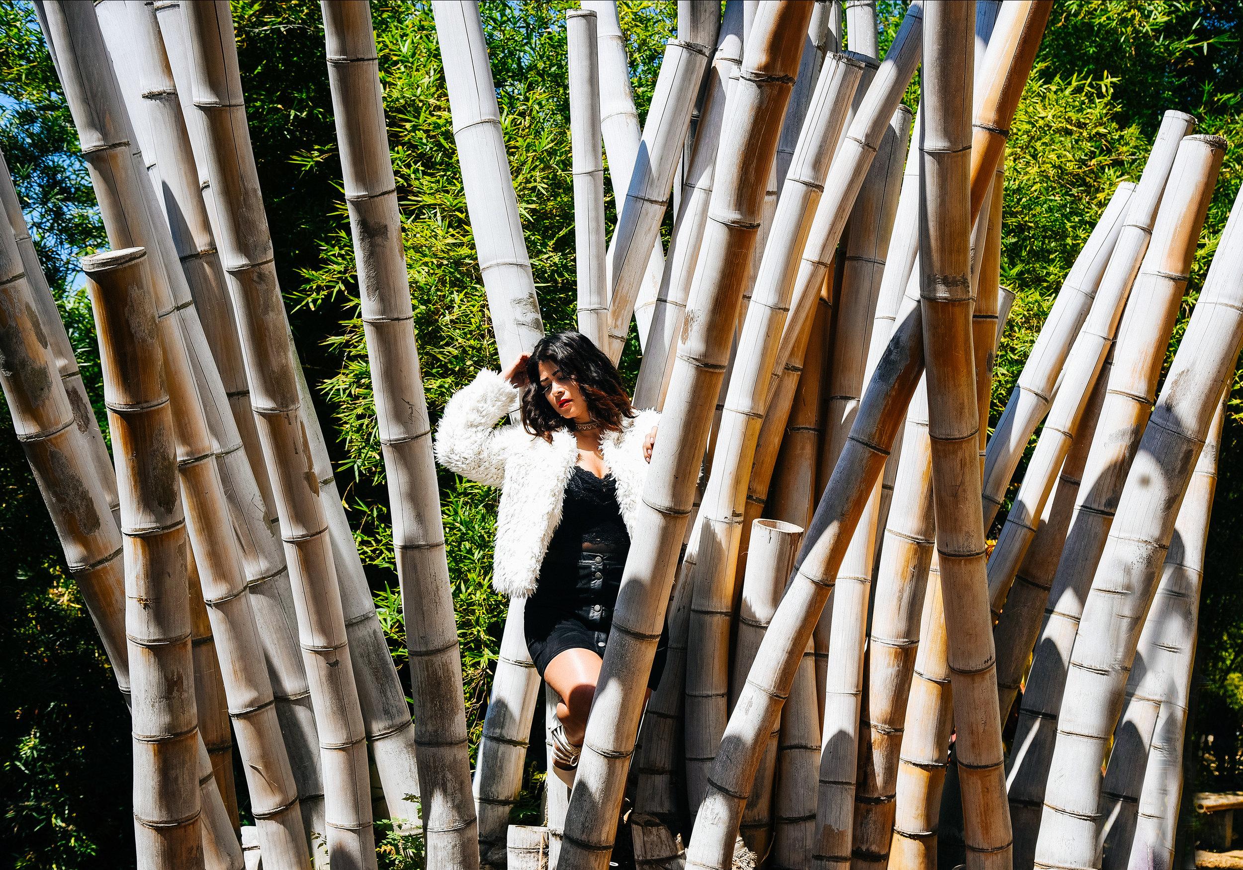 Fashion Fur Coat Dress | Fashion Photography | Lacey O
