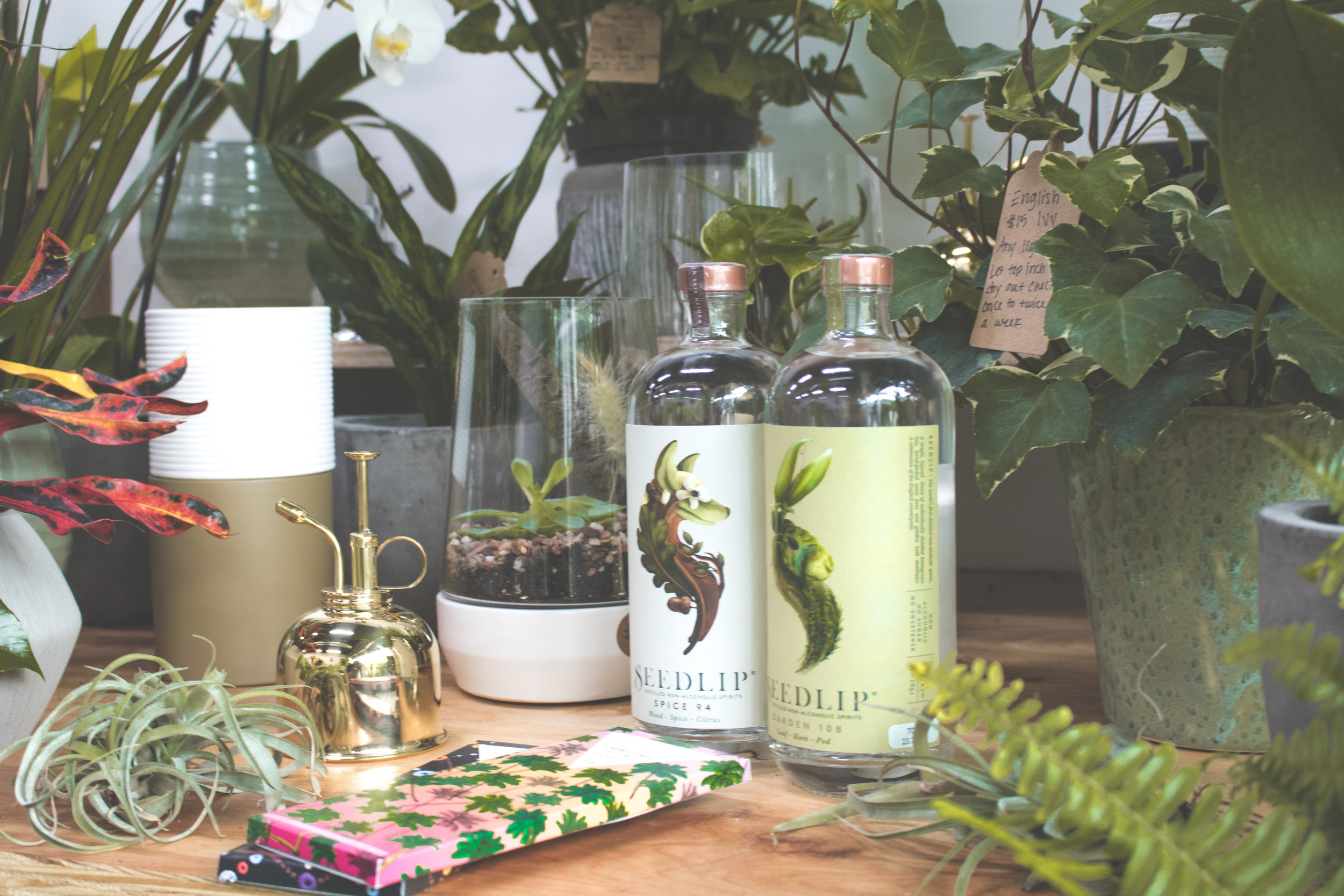 Episode 12: Amanda Griffith, Grounded Plant & Floral Co. -