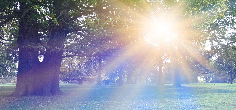 healing-Sun-light-in-god's-creation.jpg