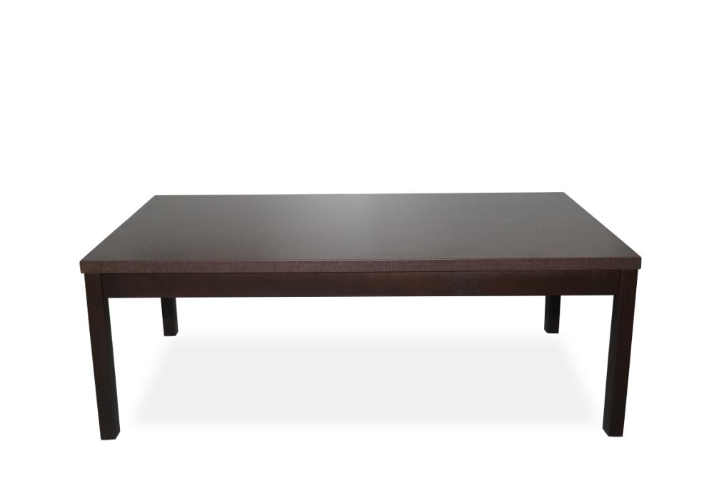 Coffee Table  - 24x48