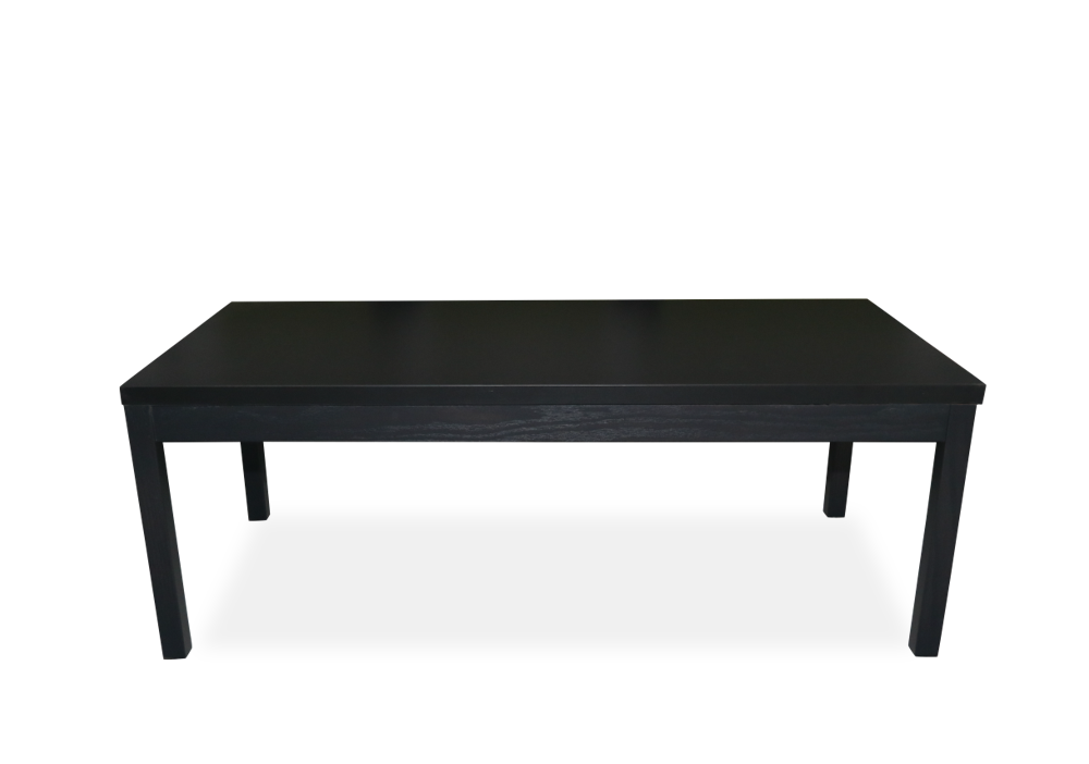 Coffee Table  - 24x48