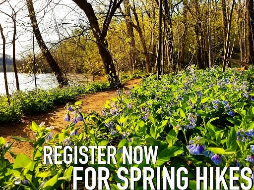 Check out our spring lineup! Get 10% off, now through Earth Day. Use SPRING2019 at check out. Link in bio. Look forward to hitting the trail with y'all!  #trailsandalesdc #hikelocaldrinklocal