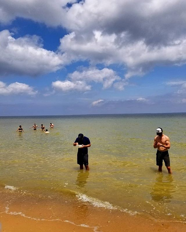 Summer heat have you dreaming of the water? Join us Sat 6/15 on our Calvert Cliffs hike where you can swim, hunt for FOSSILS (shown above), and hang out on the beach. This hike to the bay is one of our most unique adventures and you can enjoy wine slushies and a beer garden after your swim. #trailsandalesdc  #hikelocaldrinklocal #calvertcliffstatepark #runningharevineyard #calvertbrewingcompany