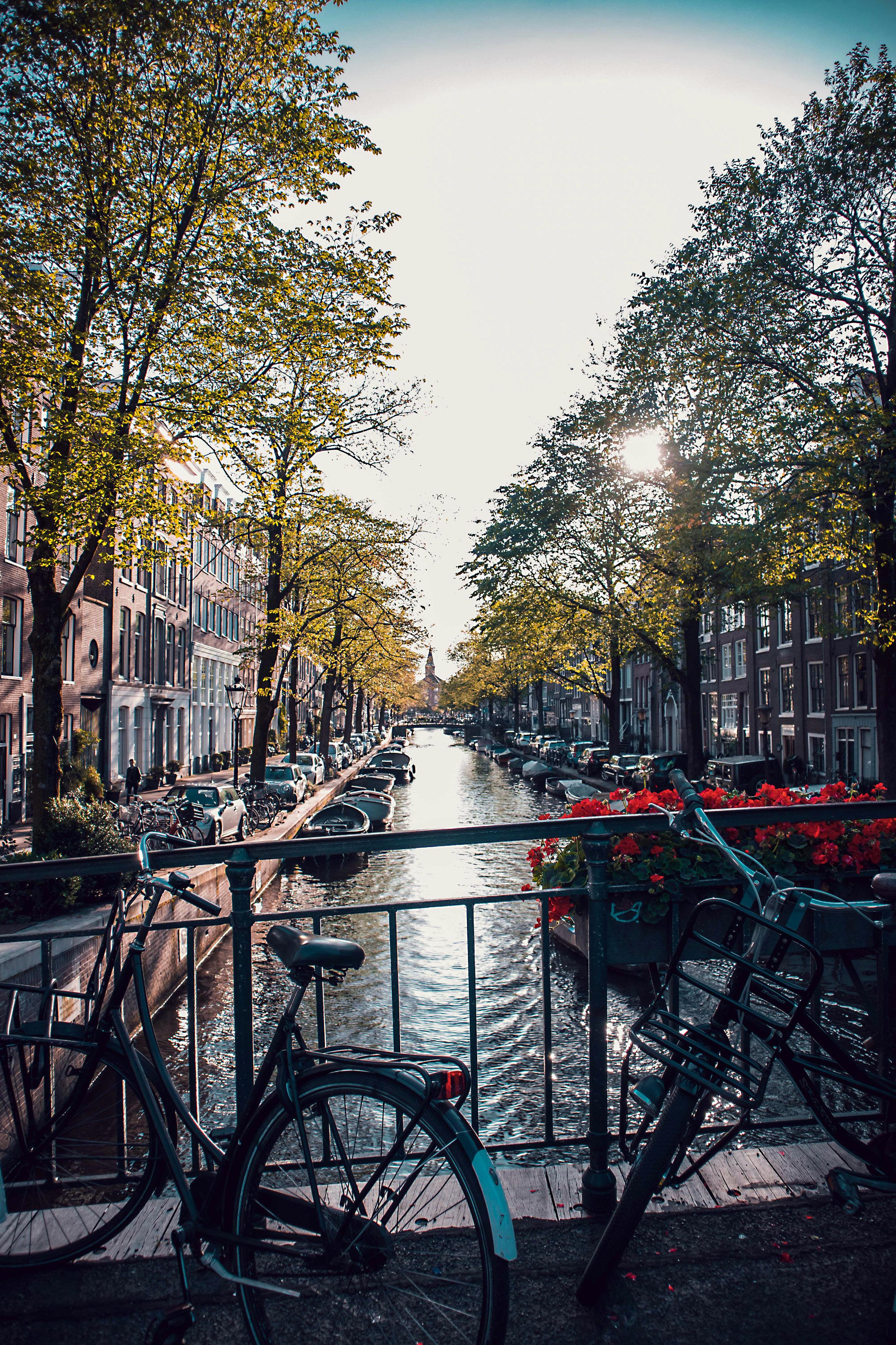 LP_AmsterdamLife.jpg