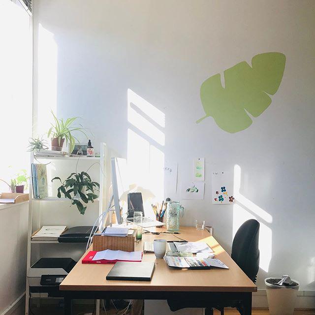 Morning light at the desk of @sarahhankinsonillustration