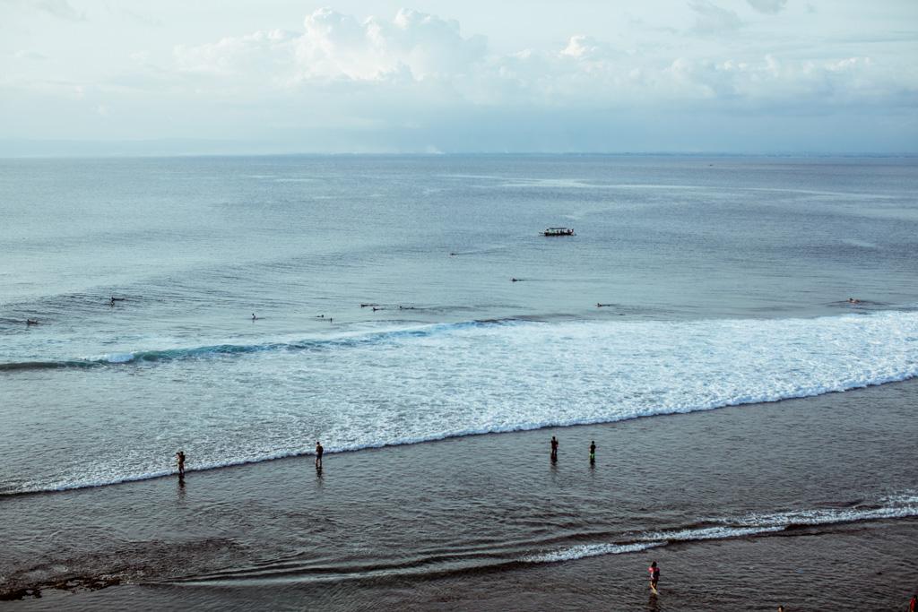 surfari-2.jpg