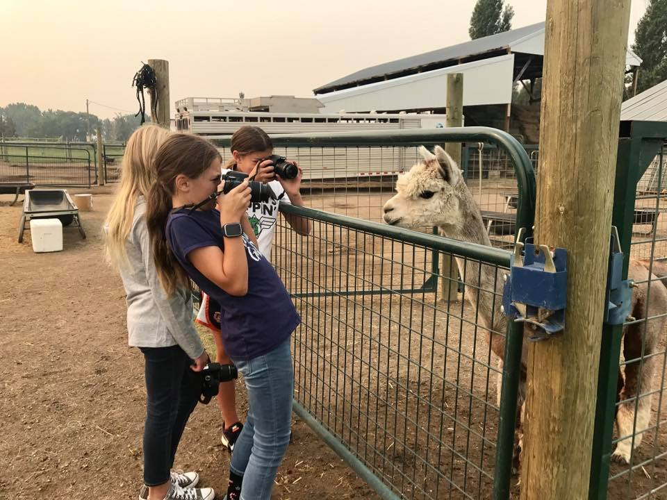 AT the farm - Alpacas are the silliest creatures. The girls found out how fun (and frustrating) it is to photograph animals.