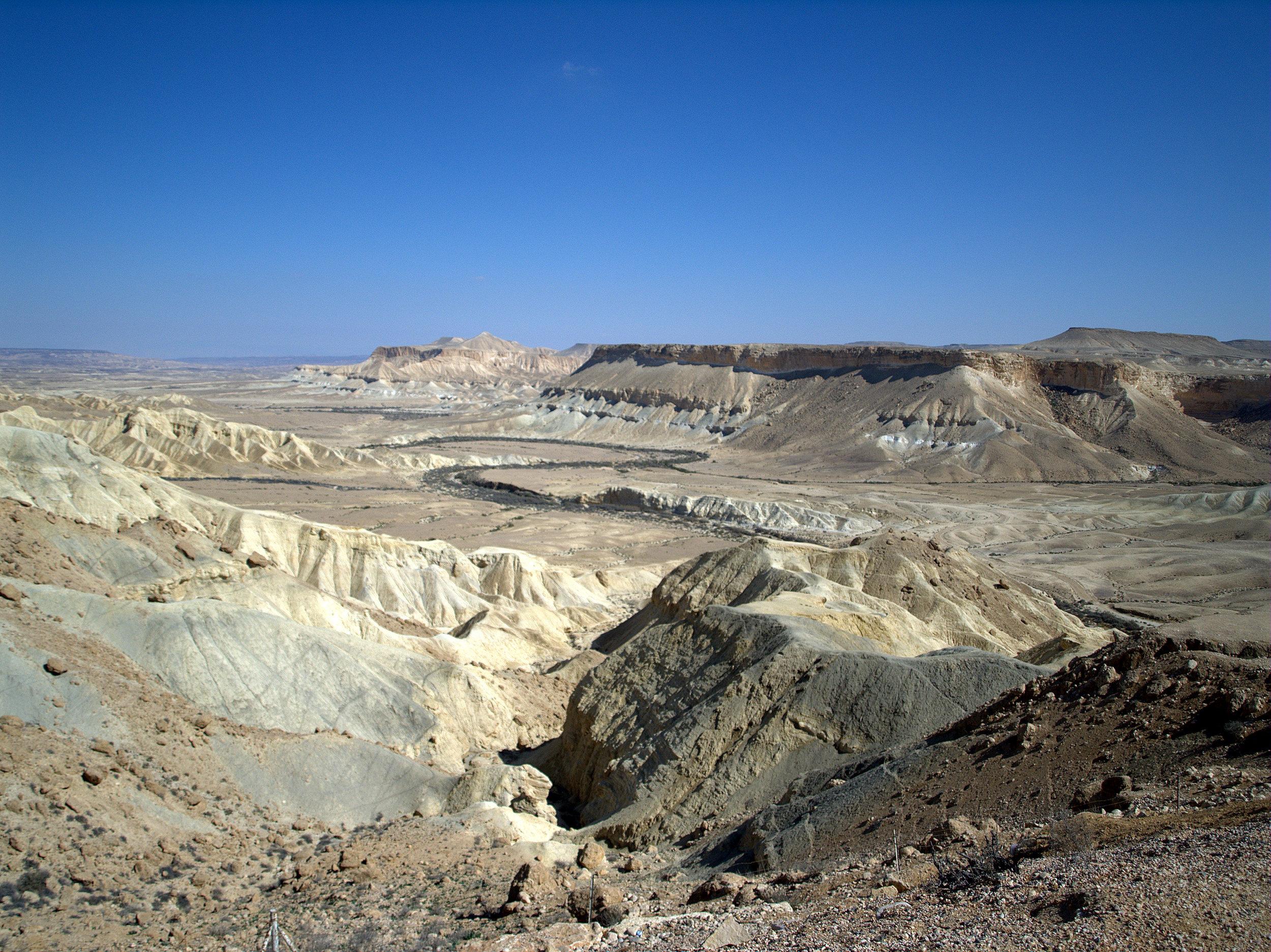 israel desert.jpg