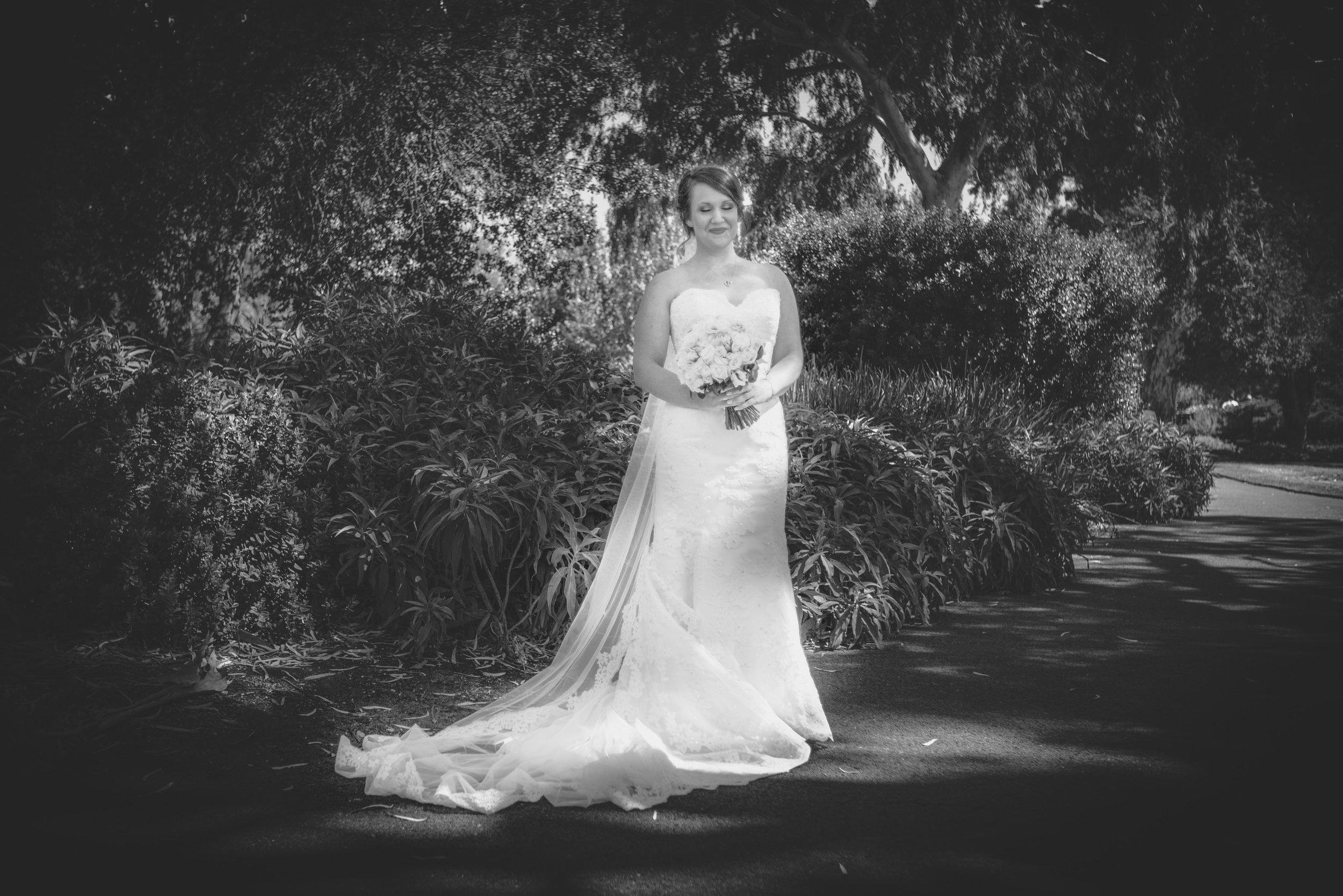 2017_DandA_Wedding-9167.jpg