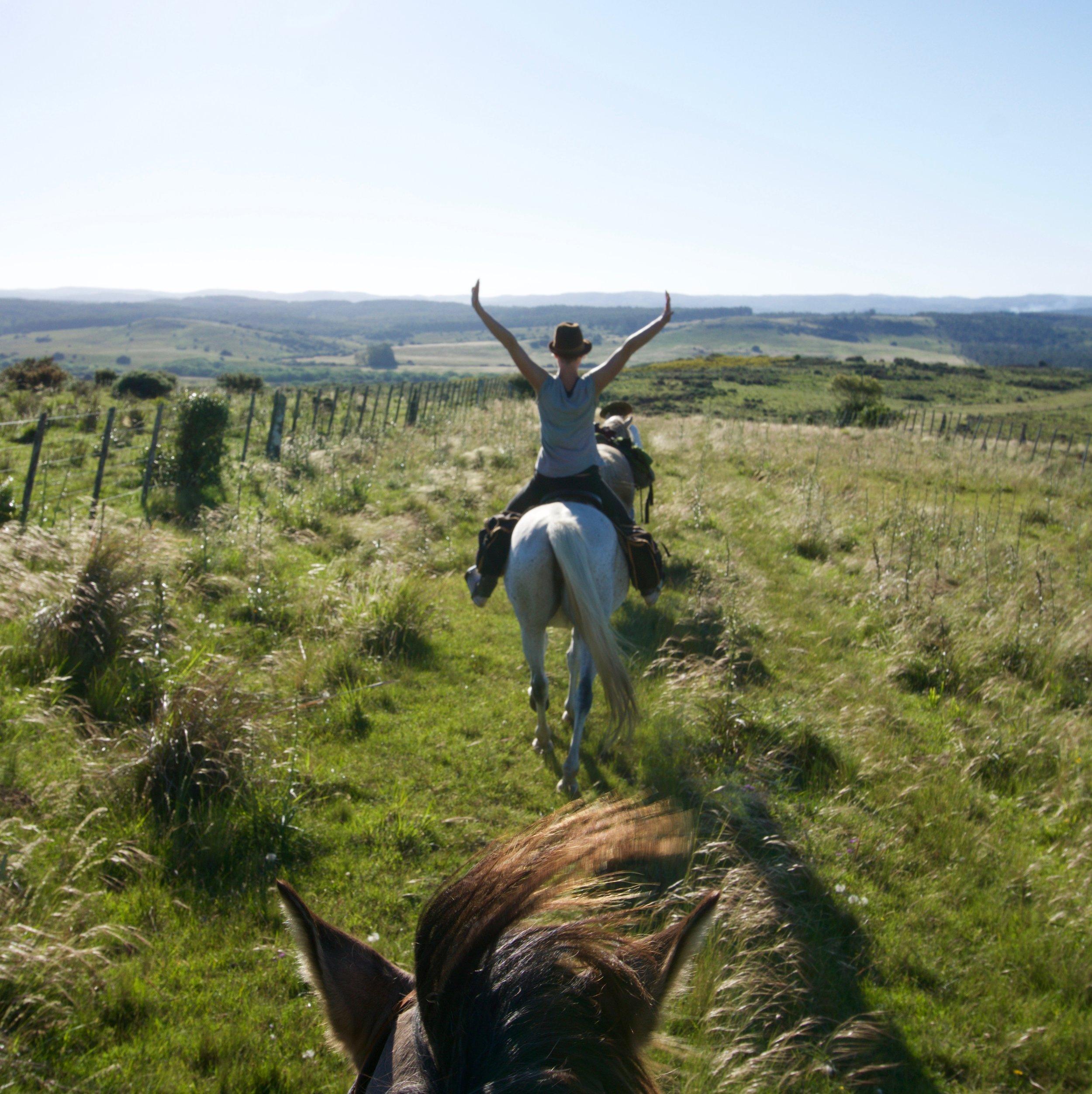 Uruguay's Horse Whisperer   Travel Begins at 40