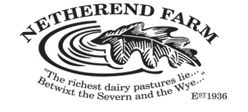 NETHEREND_logo.png