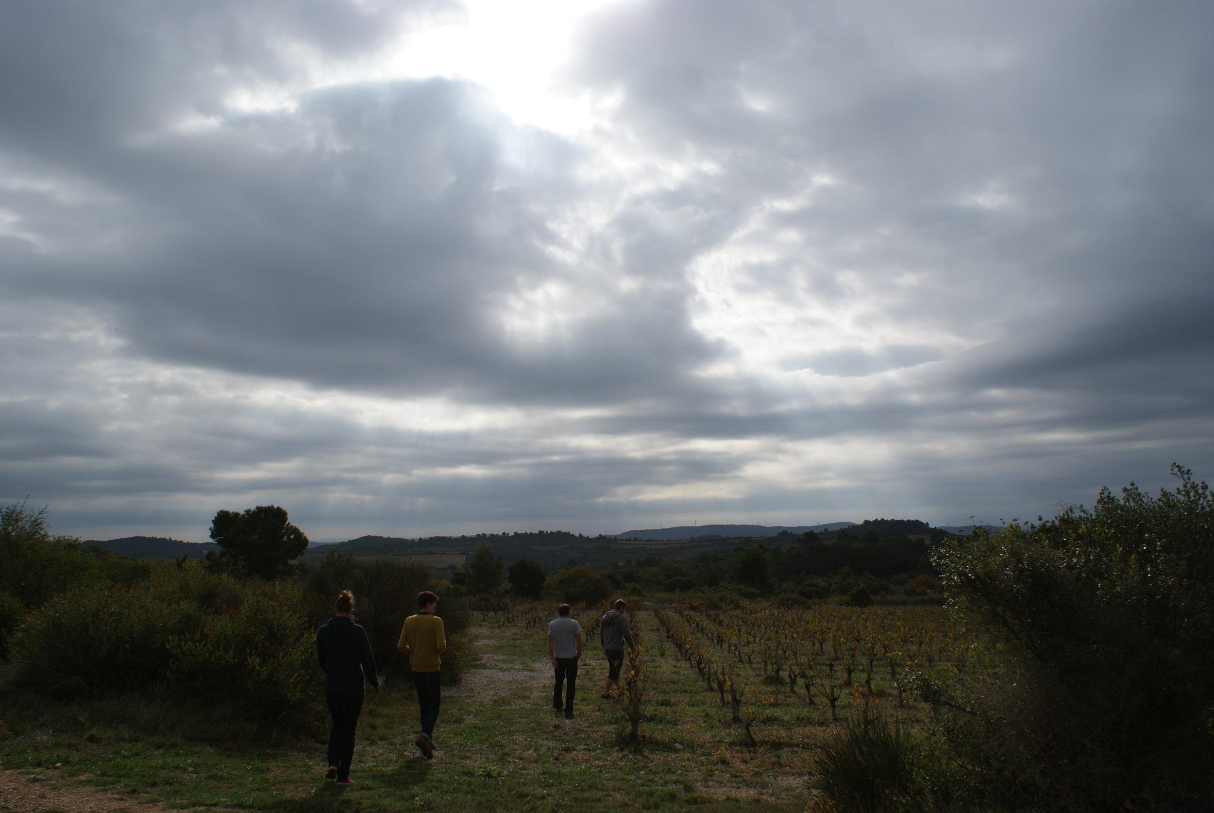 Languedoc58.JPG
