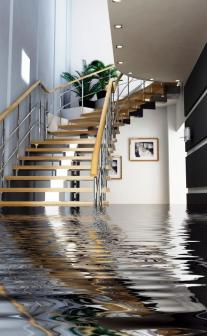 Water & Flood Damage - It could be a slow drip, main pipe break, or faulty appliance. If you want to prevent or repair water damage, let Network Restoration DKI help...
