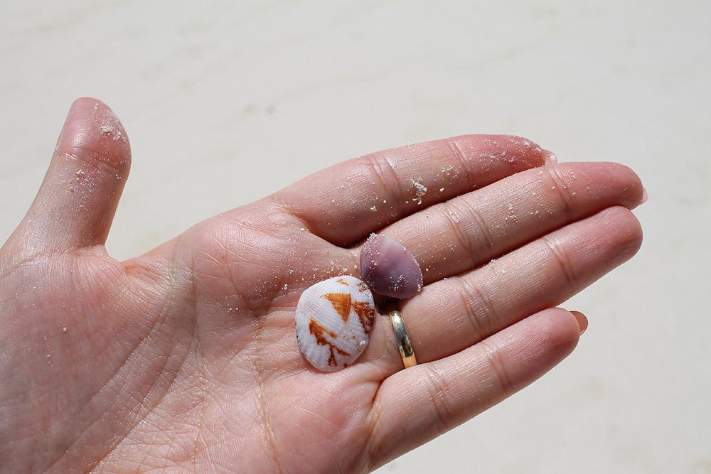 SKATTER: Å gå på stranda og plukke skjell er over middels hyggelig, spør du meg. Foto:Tenk Koffert
