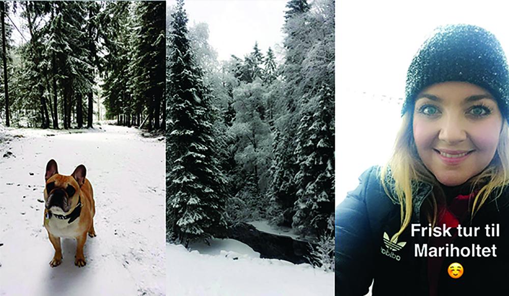 VINTERTUR: Mariholtet er flott på vinteren, og det er deilig (for meg som ikke liker å gå på ski) at det er preparerte veier. Foto: Tenk Koffert