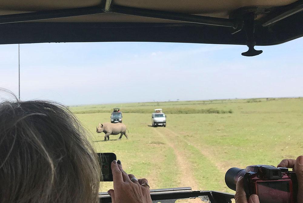 NESHORN I MASAI MARA: Neshornene er dessverre utryddet, og de er så få at det er vanskelig å få øye på dem. Vi var heldige og fikk se en da vi besøkte Masai Mara, men da stimlet det til mange biler, og dette var den eneste gangen jeg følte vi som turister forstyrret et dyr. Alle andre ganger vi så dyr gikk det mye roligere for seg. Foto: Tenk Koffert