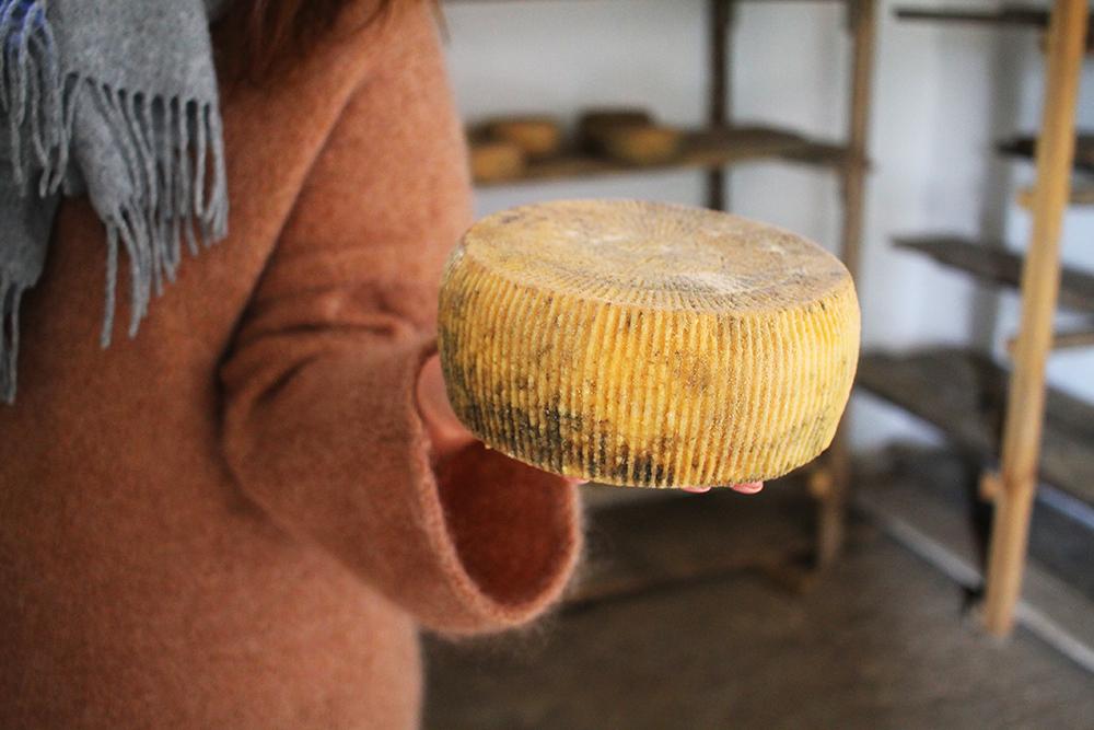JEEP SAFARI PÅ KRETA: Vi fikk også lære litt om hvordan geitebøndene produserer osten sin. Foto: Tenk Koffert