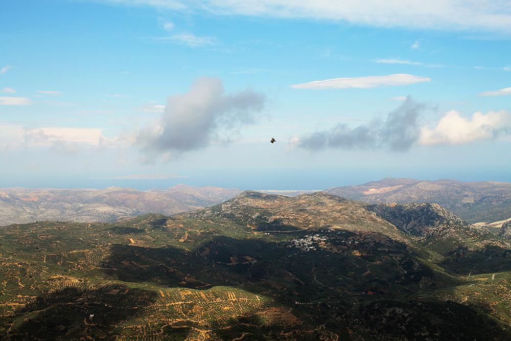 NATUREN PÅ KRETA: Over det mektige landskapet flyr en svær gåsegribb. De fascinerende fuglene kan du se om du tar deg en tur opp i fjellet. Foto: Tenk Koffert