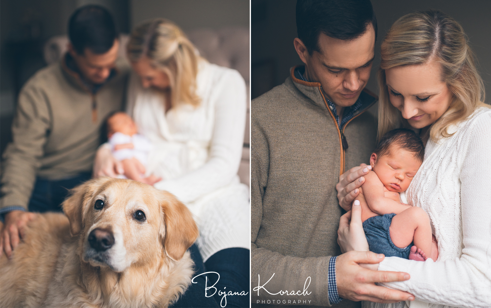 family portrait with newborn baby and golden retriever