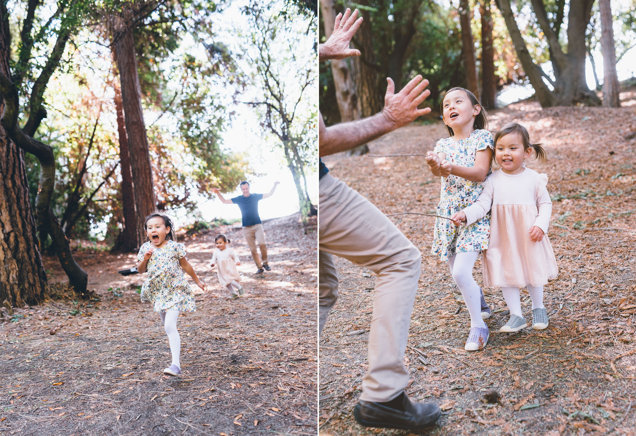 berkeley-family-photography-redwoods.jpg