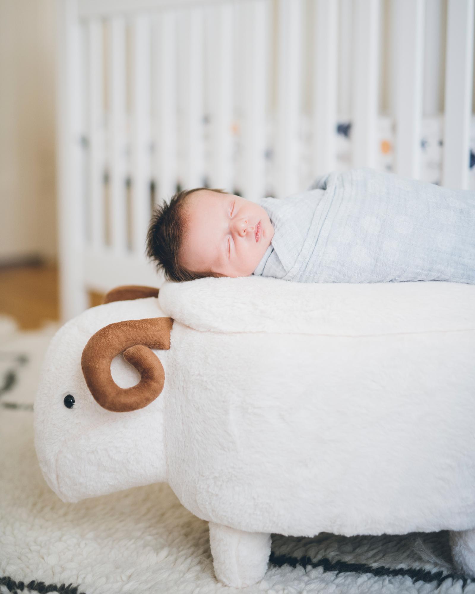 newborn-baby-boy-sleeping-on-the-sheep.jpg