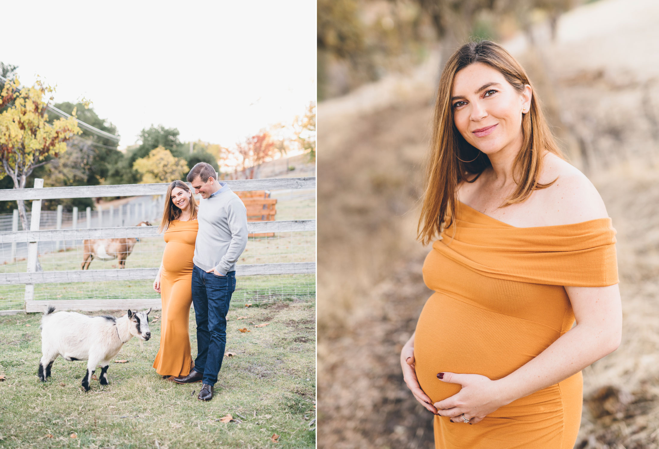 ranch-in-walnut-creek-maternity-session.jpg