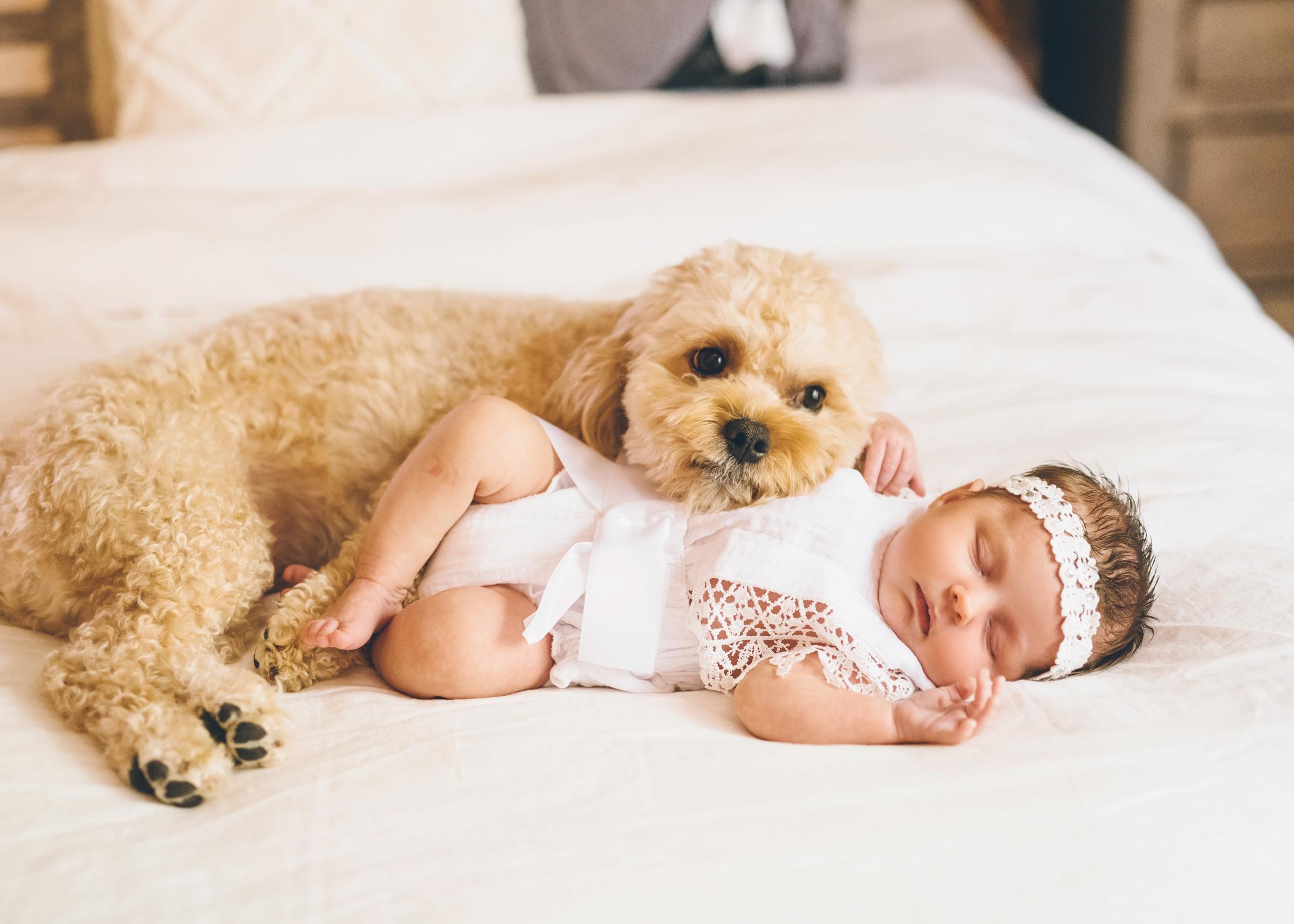 newborn-and-puppy.jpg