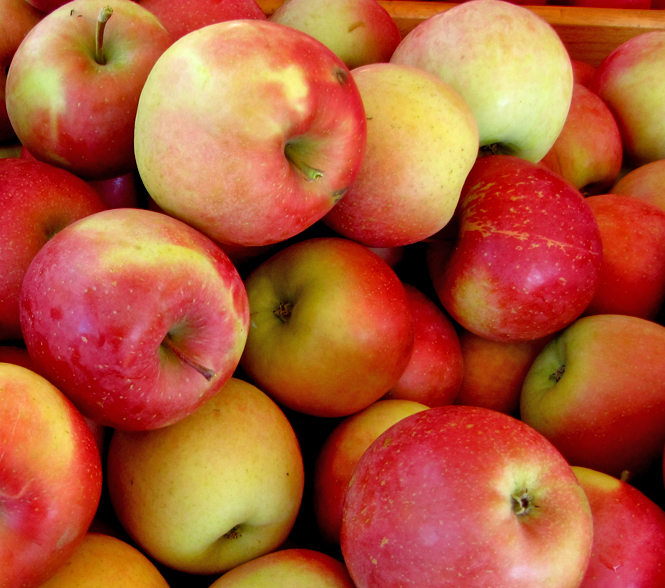 Recipes - Whip up some great snacks with these fun recipes.Georgia Grown: Here's where to find locally grown apples.