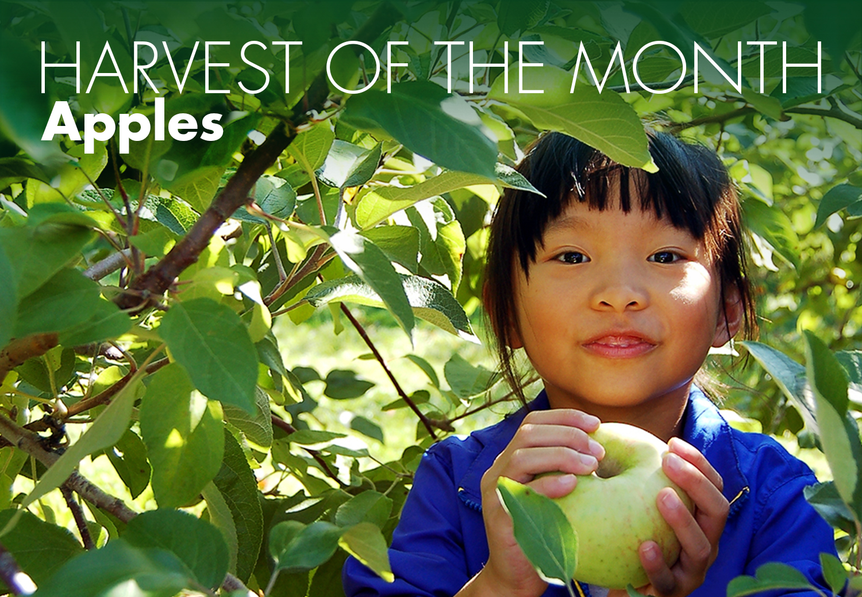 kids_eating_apples.jpg