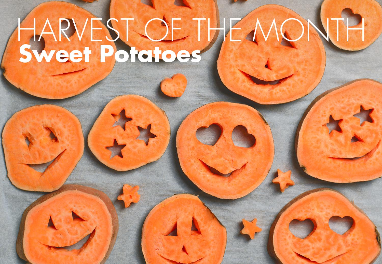 girl_with_sweetpotatoes.jpg
