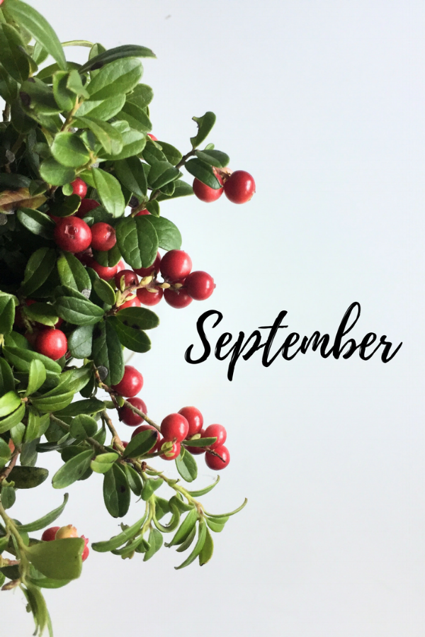 september-blogg.png