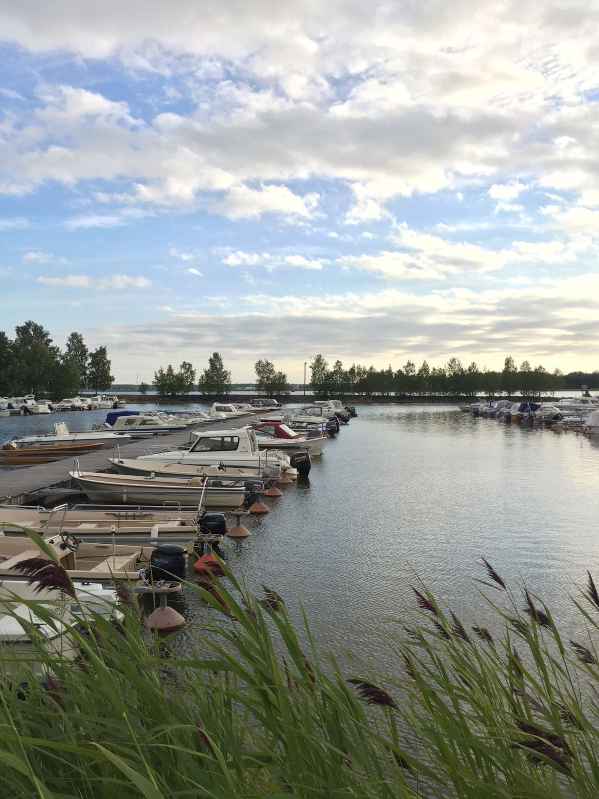 Förra sommaren valde jag att se Vasas fina stadsstrand. Det väljer jag gärna i år också.
